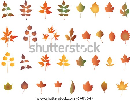 abstract vector leaves