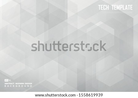Abstract white and gray hexagonal design of decoration background. Use for ad, poster, artwork, template design. illustration vector eps10