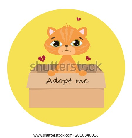 accept me vector ginger cat