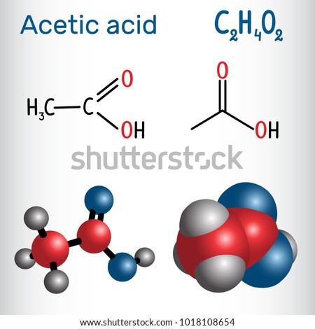 Acetic acid (ethanoic) molecule. Structural chemical formula and molecule model. Vector illustration