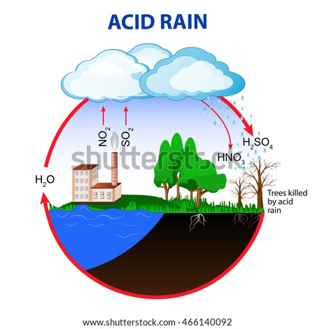 Shutterstock Acid rain is caused by emissions of sulfur dioxide and nitrogen oxide, which react with the water molecules in the atmosphere to produce acids.
