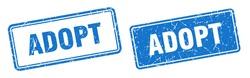 adopt square stamp. adopt grunge sign set