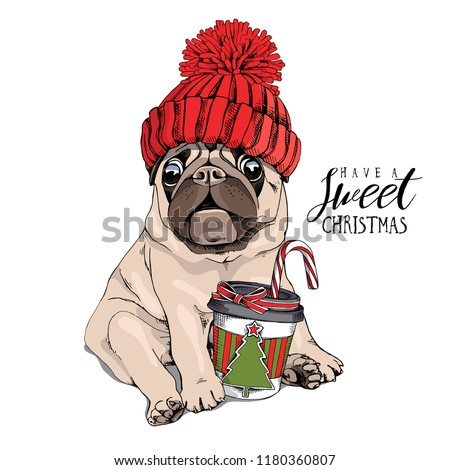 Adorable beige puppy Pug in a red knitted hat and with a coffee. Have a sweet christmas - lettering quote. New Year card, t-shirt composition, handmade vector illustration. Сток-фото ©