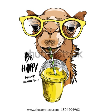 Adorable Camel in a glasses with a Plastic Cup Mockup of Smoothie. Humor card, t-shirt composition, hand drawn style print. Vector illustration.