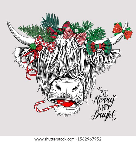 Adorable Cow with bangs in a coniferous headband and with a bows. Be merry and bright - lettering quote. Christmas and New year card, Humor composition, hand drawn style print. Vector illustration.