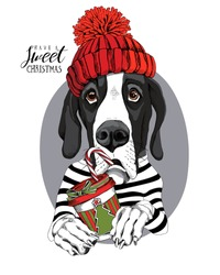 Adorable Great Dane dog in a red knitted hat and with a cup of coffee. Have a sweet christmas - lettering quote. New Year card, t-shirt composition, handmade vector illustration.