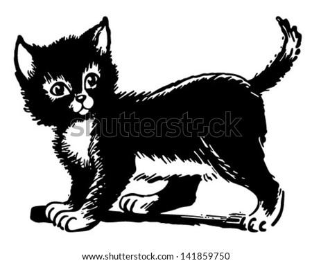 adorable kitten   retro clip