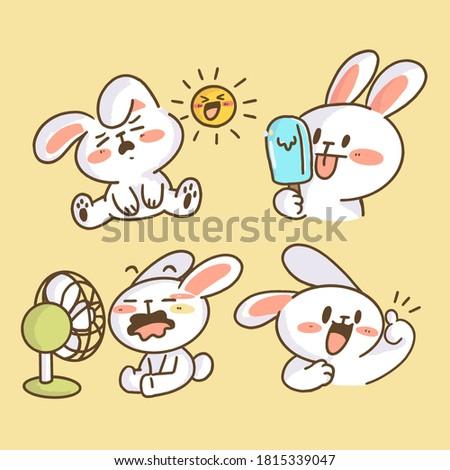 adorable little bunny rabbit