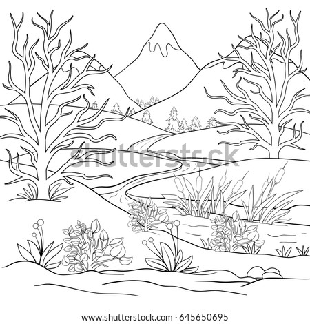 adult coloring page book