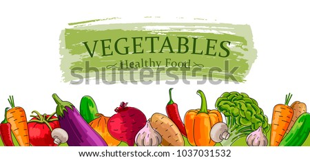 Advertising banner with fresh Vegetables, healthy food illustration, outlined hand drawn graphic #1037031532