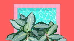 Aesthetic tropical Aglaonema (Chinese evergreen) plants and pool, simple nostalgic vintage summer vibe, pastel pink and green flat illustration