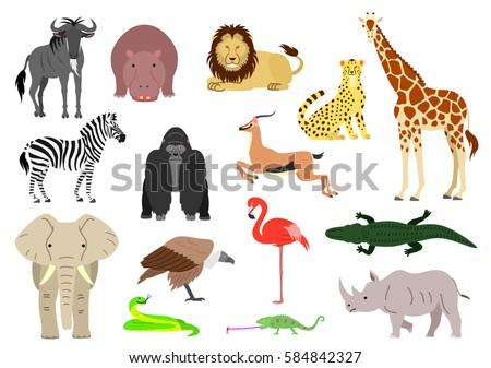 African animal element set on white background