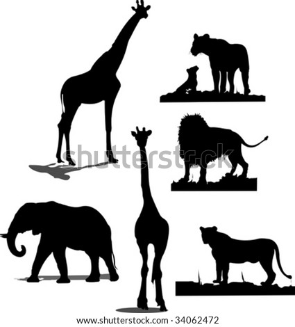 black and white photos of animals. Black and white silhouettes
