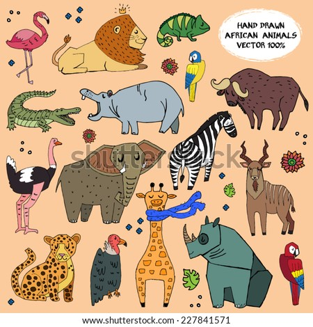 african animals hand drawn