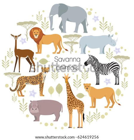 African animals of savanna: elephant, rhino, giraffe, cheetah, zebra, lion, hippo isolated cartoon vector illustration for a book