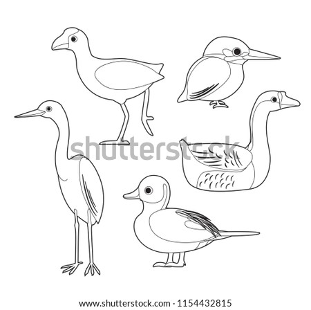 Coloring Book Bird Animal Vector Download Free Vector Art Stock