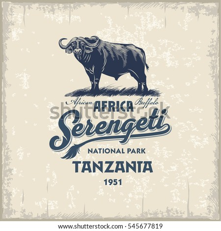 African Buffalo, Serengeti national Park, Tanzania, vintage, illustration, vector
