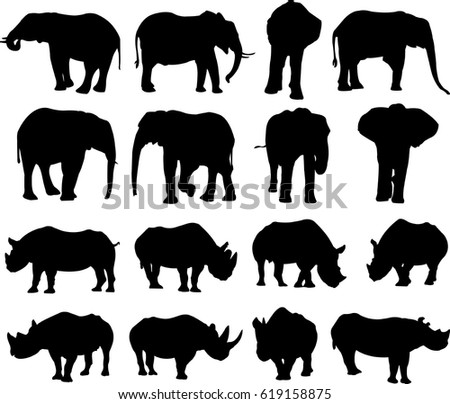 african elephant and black
