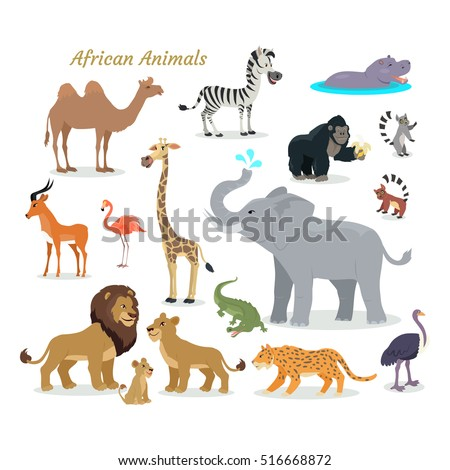 african fauna species cute