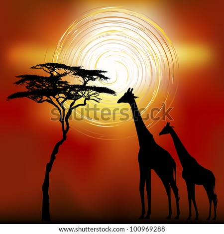 african landscape flora and