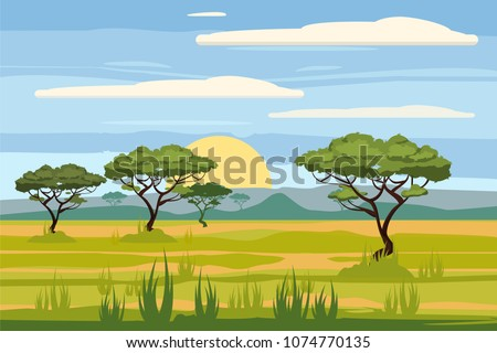 African landscape, savannah, sunset, vector, illustration, cartoon style, isolated