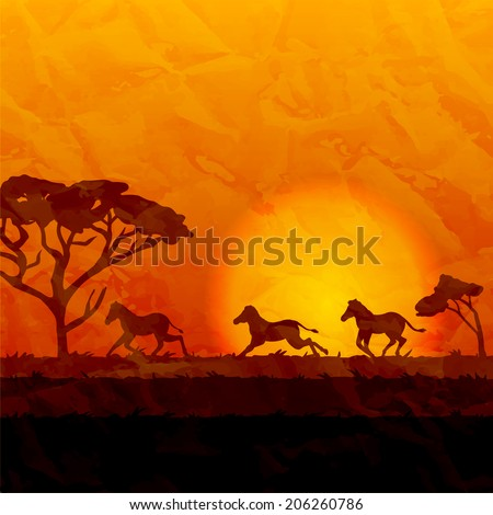 african landscapes  silhouettes