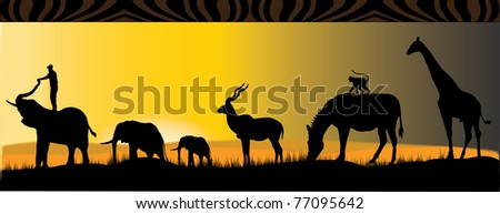 african safari with six different african animals in the sunset