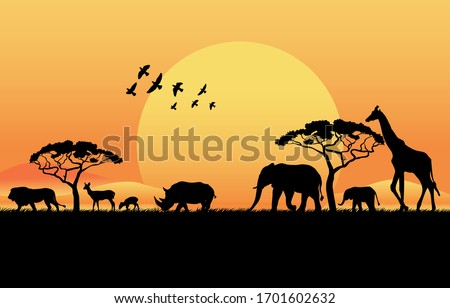 African savanna at sunset. Silhouettes of animals and plants. Realistic vector landscape. The nature of Africa. Reserves and national parks. Photo stock ©