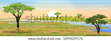 African savannah. Grass, acacia trees and river. Realistic vector landscape. The nature of Africa. Reserves and national parks. ストックフォト ©