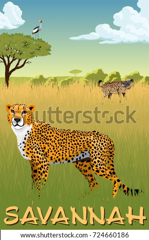 African savannah with cheetah,  spotted hyena and crowned crane - vector illustration