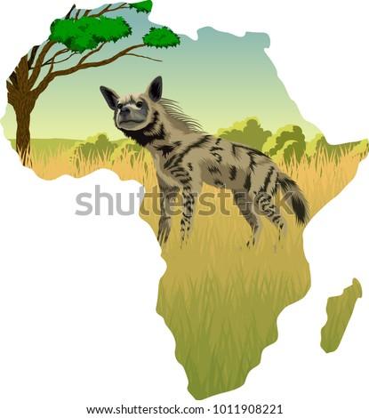 African savannah with striped hyena - vector illustration