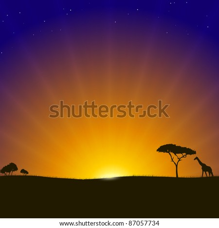 African Sunset Background