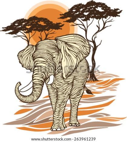 african sunsetsbig elephant