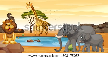 African water hole lion, giraffe and elephants
