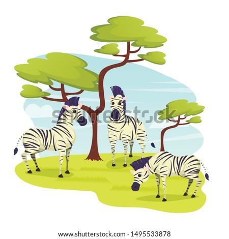 african wild zebras herd