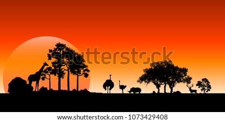 African Wildlife Background. Nature Background. African savanna landscape.