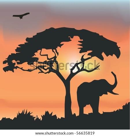 wildlife wallpaper. Wildlife Background.