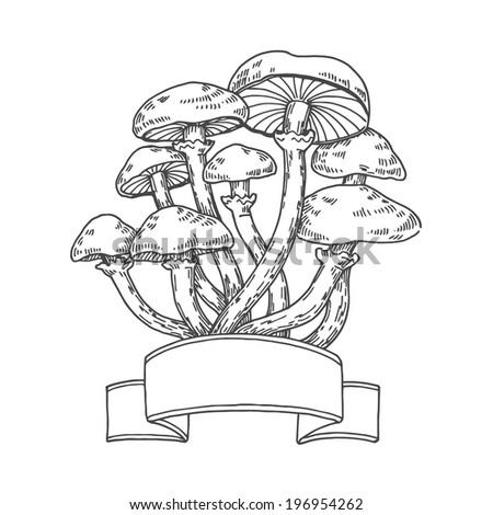 agaric mushrooms  vector hand