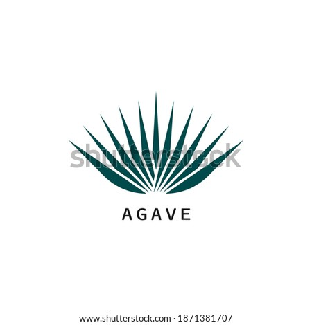 Agave icon design isolated on white background. Vector illustration