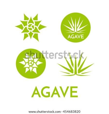 agave plant green flower logo