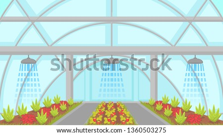 Agricultural Irrigation System Vector Illustration. Automatic Sprinkler Watering Greenhouse Plants. Modern Horticulture Cultivation, Hydroponics Technology. Berry and Vegetable Plantation in Hothouse