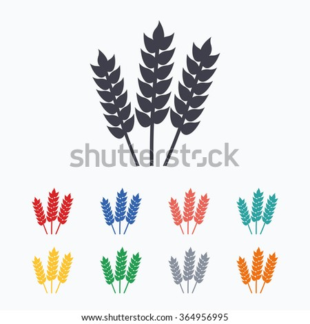 Agricultural sign icon. Gluten free or No gluten symbol. Colored flat icons on white background.