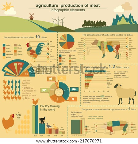 Agriculture animal husbandry infographics Vector illustrationstry info graphics Vector illustration