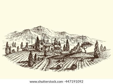agriculture landscape. land...
