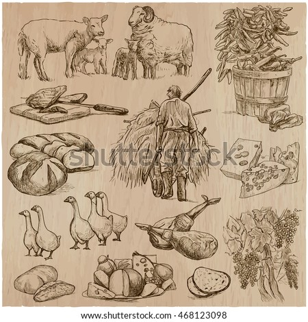 AGRICULTURE - Life of a farmer. Life on the farm . Collection of an hand drawn vector illustrations. Set of freehand sketches. Line art technique. Each sketch comprise a few layers of outlines.