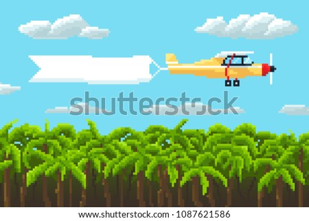 airplane with poster and palm
