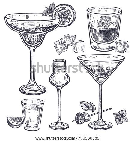 Alcoholic drinks set. Margarita, whiskey, tequila, vodka and vermouth in glasses, ice, olives, mint, lemon. Isolated on white background. Black and white. Vintage. Hand drawing. Vector illustration.