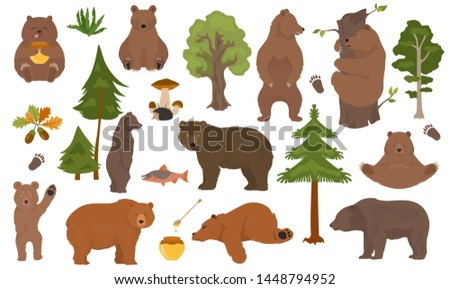all bear species in one set