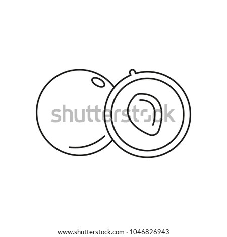 alma icon outline alma vector