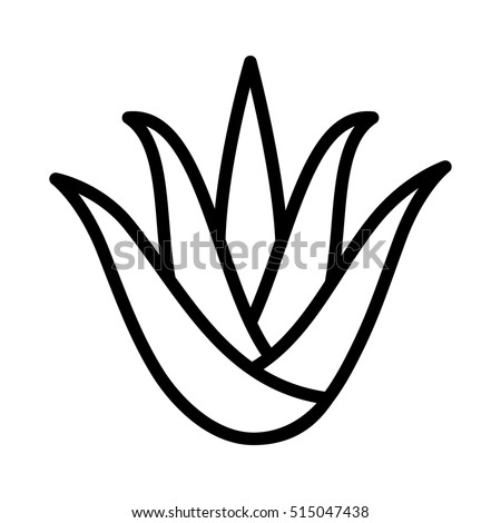 Aloe vera plant with leaves flat icon for apps and websites